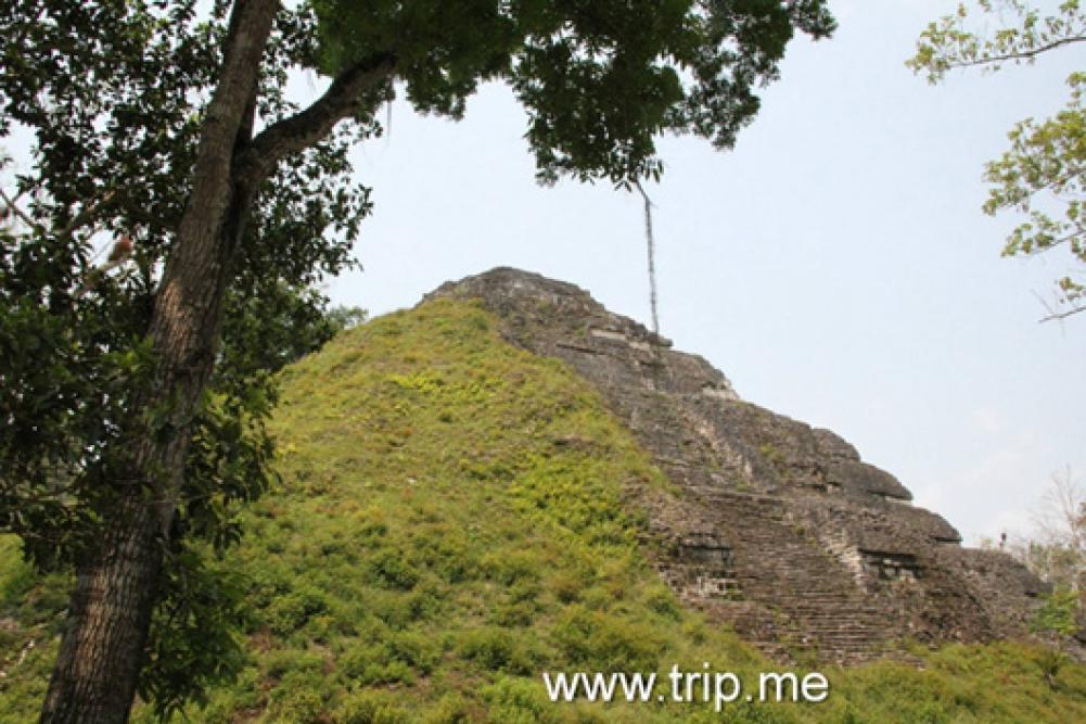 The Mayan Temple in Tikal Guatemala