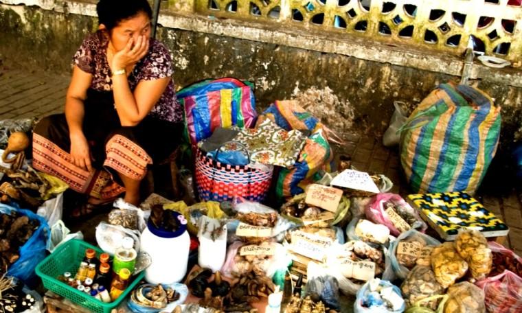 Laos Asian Food Market